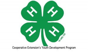 Cover photo for 4-H Wreath and Garland Sale!