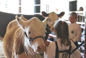 Cover photo for 73rd Annual Central Piedmont Jr. Livestock Show & Sale Results