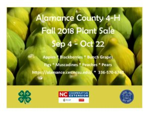Cover photo for 4-H Plant Sale - Fall 2018