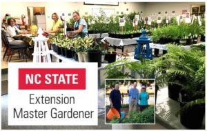 Cover photo for Alamance Gardener October 2018