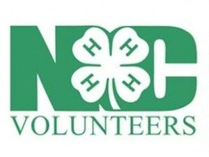 Cover photo for 4-H Aspiring and Current Volunteer Leader Training
