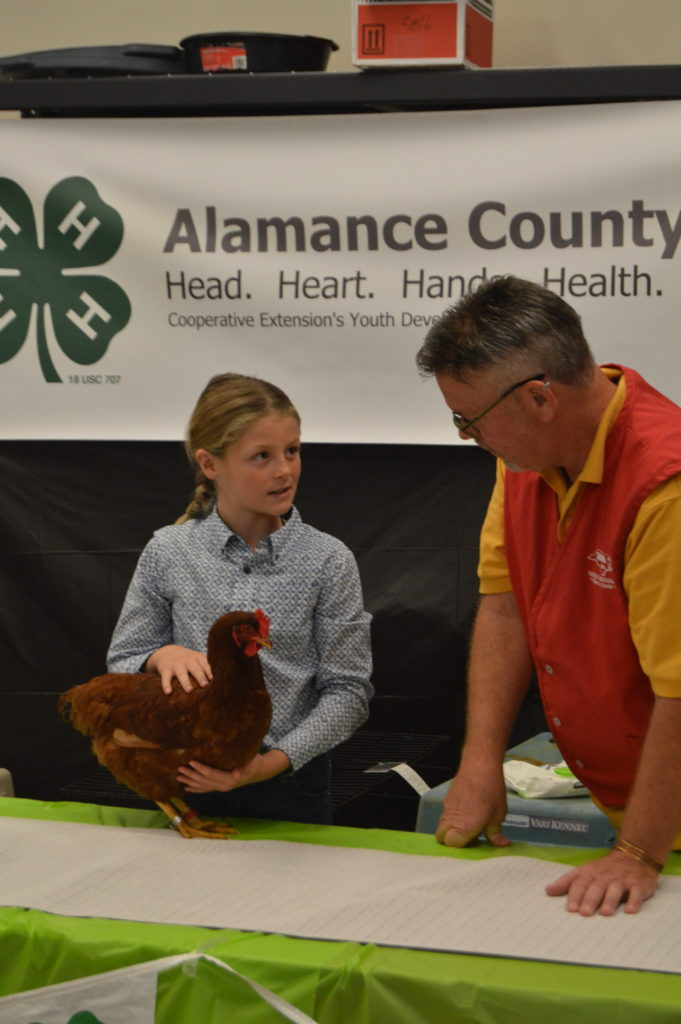 Youth answers judge's questions during showmanship.