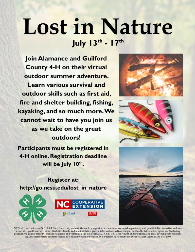 Lost in Nature program flyer