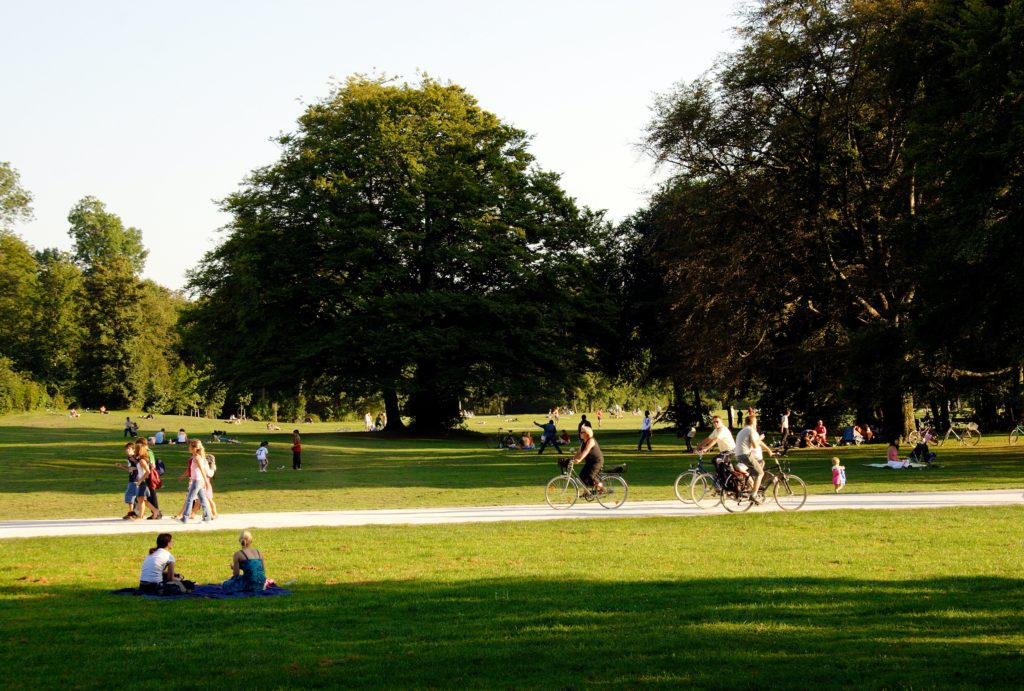 People at a park