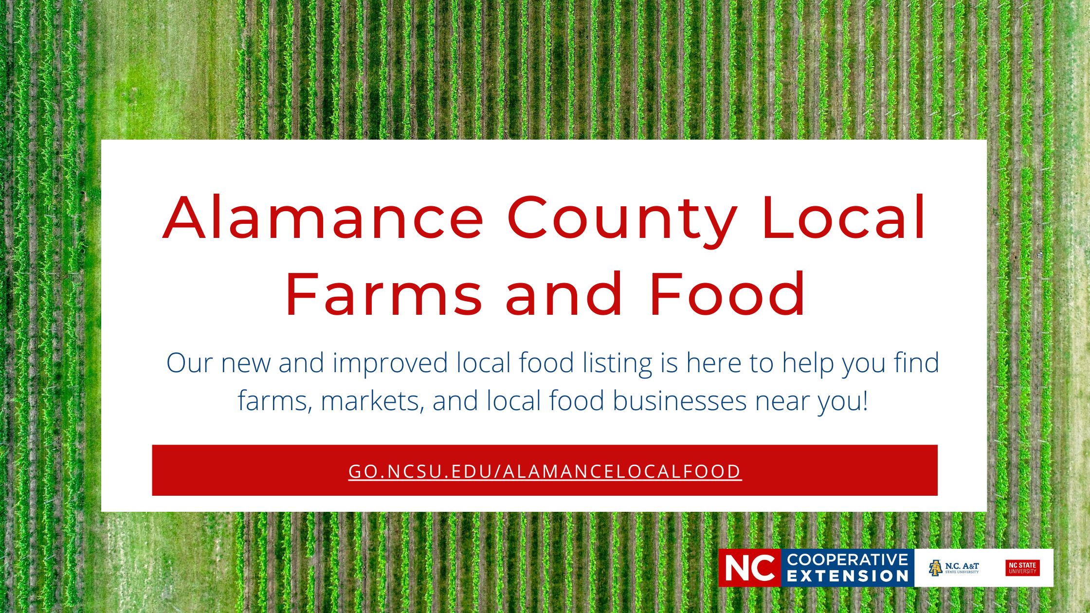 Red text on white background saying Alamance County Local Farms and Food with link to local food listing