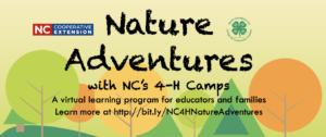 Cover photo for Nature Adventures This Fall!