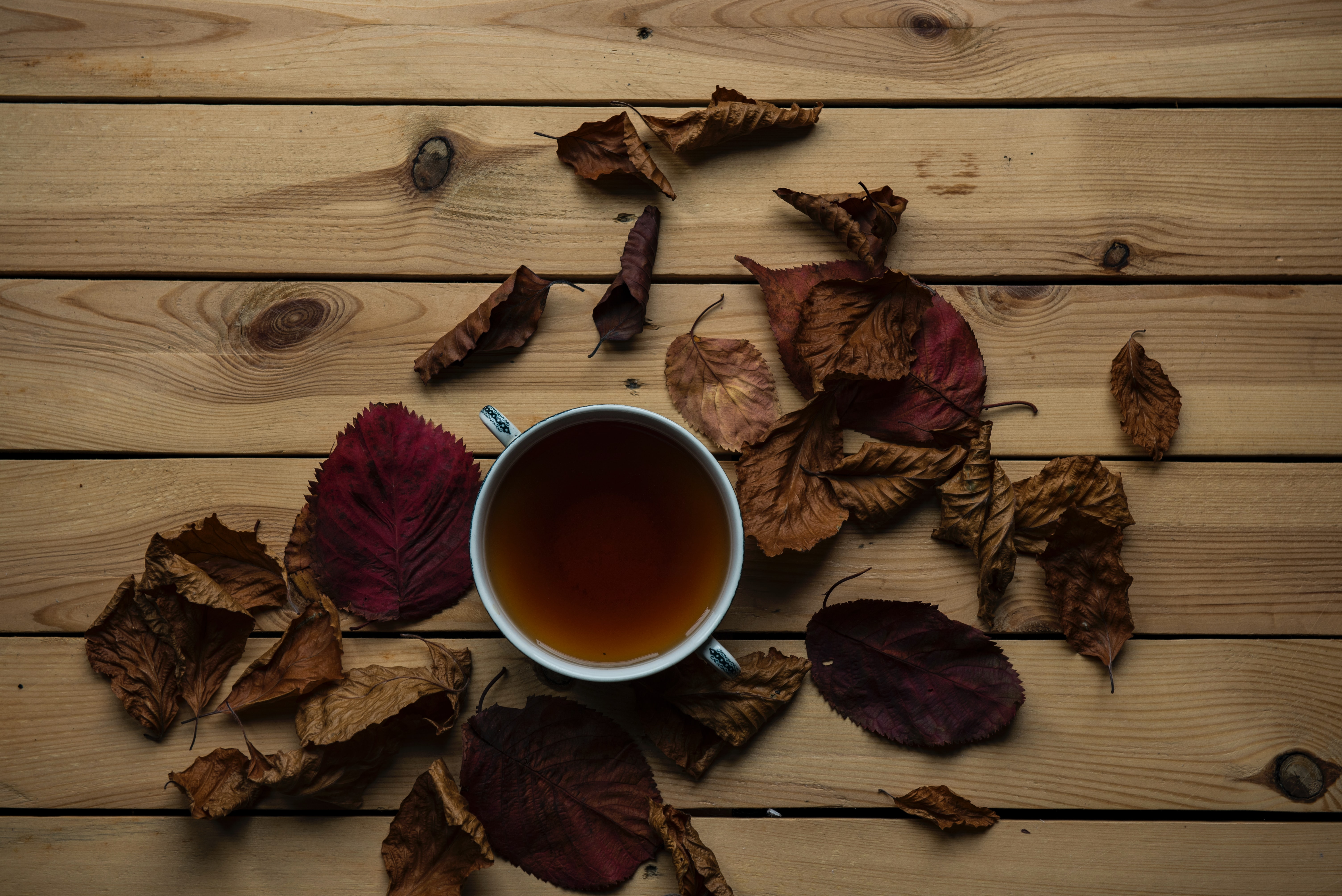 cup of tea in front of a wood background with leaves scattered around the cup